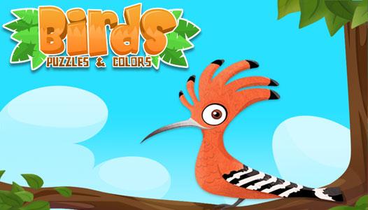 banner_birds_526
