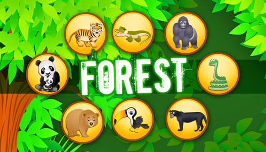 banner_forest_526